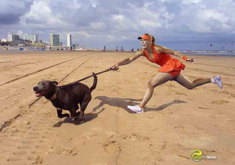 Caroline #Wozniacki sexy legs beach funny tennis pimpmytennis