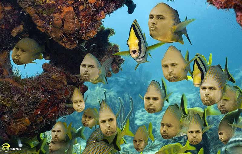 Mardy Fish funny tennis pimpmytennis