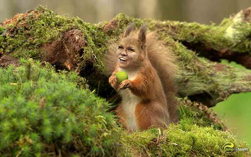 Simona Halep cute funny tennis pimpmytennis
