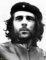 Juan Martin del Potre Che Guevara Argentina